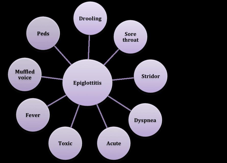 Epiglottitis Scheme