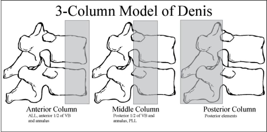 3-column-model-of-denis