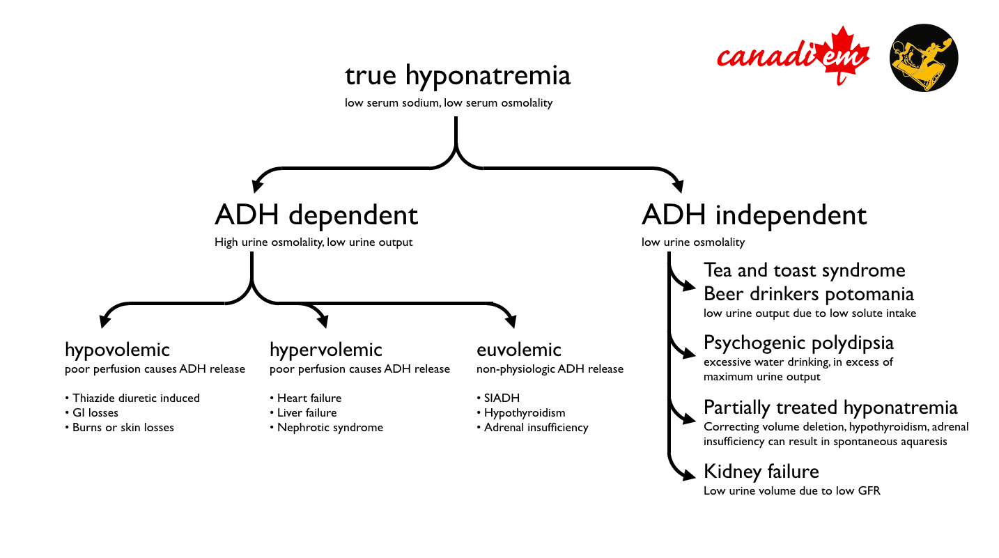 What Athletes Should Know About Hyponatremia What Athletes Should Know About Hyponatremia new photo